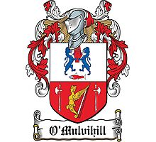 O'Mulvihill Coat of Arms (Clare) Photographic Print