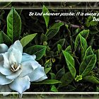 Kindness with Gardenia by GolemAura