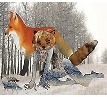 The Fox (4362 Views) Photographic Print
