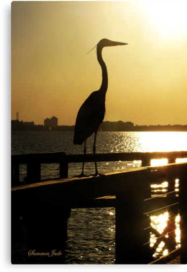 The Heron ~ Sundown Silhouette by SummerJade