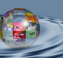 Water drop world by Lyn Evans