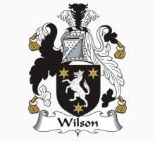 Wilson Coat of Arms I (Donegal 1636) by coatsofarms