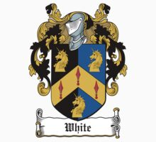 Wright Coat of Arms (Irish) by coatsofarms