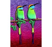Green Bee-Eaters Photographic Print