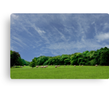 Bales of Hay, Green Fields and Blue Skies - Brittany Country side Canvas Print
