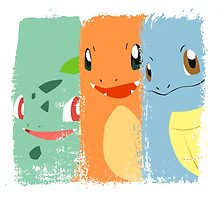 Pokemon- The Starters by AronGilli by AronGilli