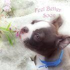 Feel Better Soon ~ Boston Terrier Greeting Card by Susan Werby