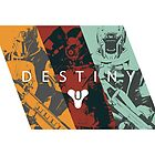 Destiny - Classes by AronGilli by AronGilli