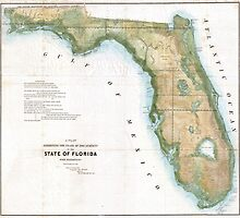 Vintage Map of Florida (1848)  by BravuraMedia