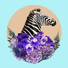 Zebra Beauty by infloence