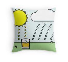 Whisky Sunlight Throw Pillow
