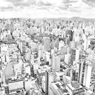 View of Sao Paulo, Brazil by gianliguori