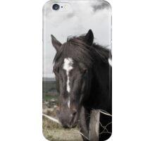 black Irish horse and ancient round tower iPhone Case/Skin