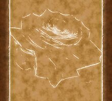Pink Roses in Anzures 3 Outlined Brown by Christopher Johnson