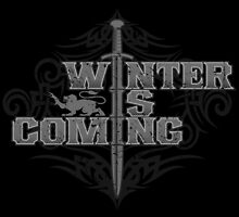 Winter Is Coming by trev4000