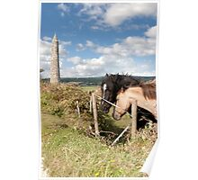 pair of Irish horses and ancient round tower Poster