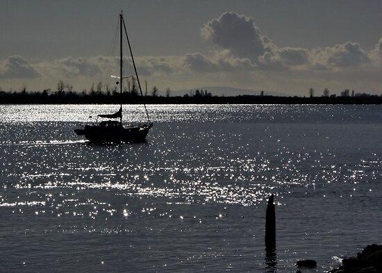 Sailboat Silhouette by AnnDixon