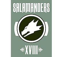 Salamanders XVIII - Warhammer Photographic Print