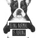 Being normal is boring by soltib