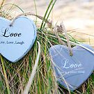 two love hearts on grassy dunes by morrbyte