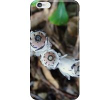 Indian pipes iPhone Case/Skin