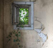 little window by Nicole W.