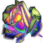 Splendiferous rose design by ?? B. Randi Bailey