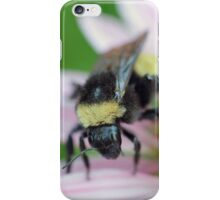 Summer is winding down... iPhone Case/Skin