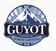 Mount Guyot North Carolina by Carolina Swagger