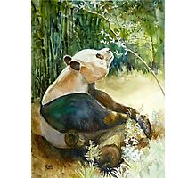 Stop and smell the Flowers id1270236 panda bear Photographic Print