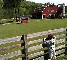 Farm visit on a Spring Day. by ThroughJimsEyes