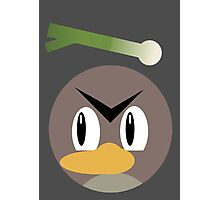 Farfetch'd Ball Photographic Print