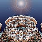 Sun Dried by barrowda