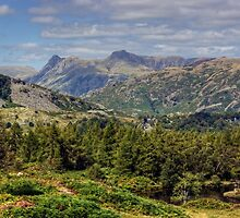 The Langdale Pikes From Holme Fell by Jamie  Green