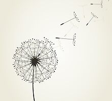 Dandelion by Aleksander1
