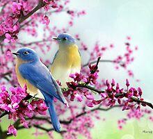 Sweet Bluebirds by Morag Bates