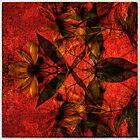 Still life  flowers by Jean-Francois Dupuis by Jean-François Dupuis