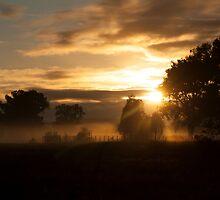 Stockyard Sunrise by Linda Lees