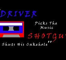 Driver Picks The Music by Sania Mullaji
