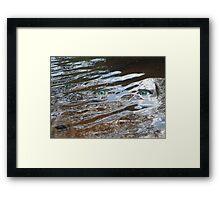 Eyes of the Storm Framed Print