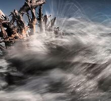 Nature's Fury  by Kevin Raggio