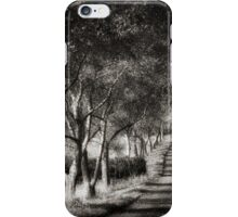 Path Of Trees And Shadows iPhone Case/Skin