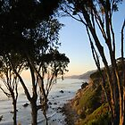 Wind and Sea Estate - Big Sur by Miriam Gordon