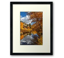 Susan River Autumn Reflections Framed Print