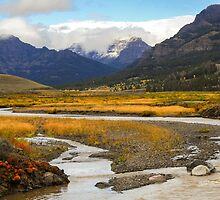 Lamar Valley in Autumn by lkamansky