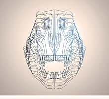 T-rex Skull in Wireframe by allenamin