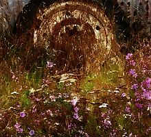 The Spare Wheel  by PictureNZ