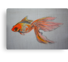 Goldfish Pond ( close up #9) Canvas Print