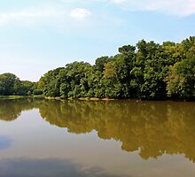 Another River View by WeeZie