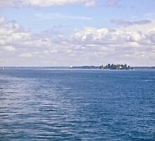 The St. Lawrence River. ON Canada and New York, USA seen from tour boat by Shulie1